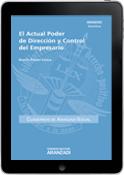 El Actual Poder de Dirección y Control del Empresario (e-book)