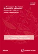 C.t.c.nº28(2º-11): la proteccion del honor, la intimidad y la propia imagen en Internet 1ª ed.
