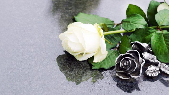 Una rosa sobre una lápida
