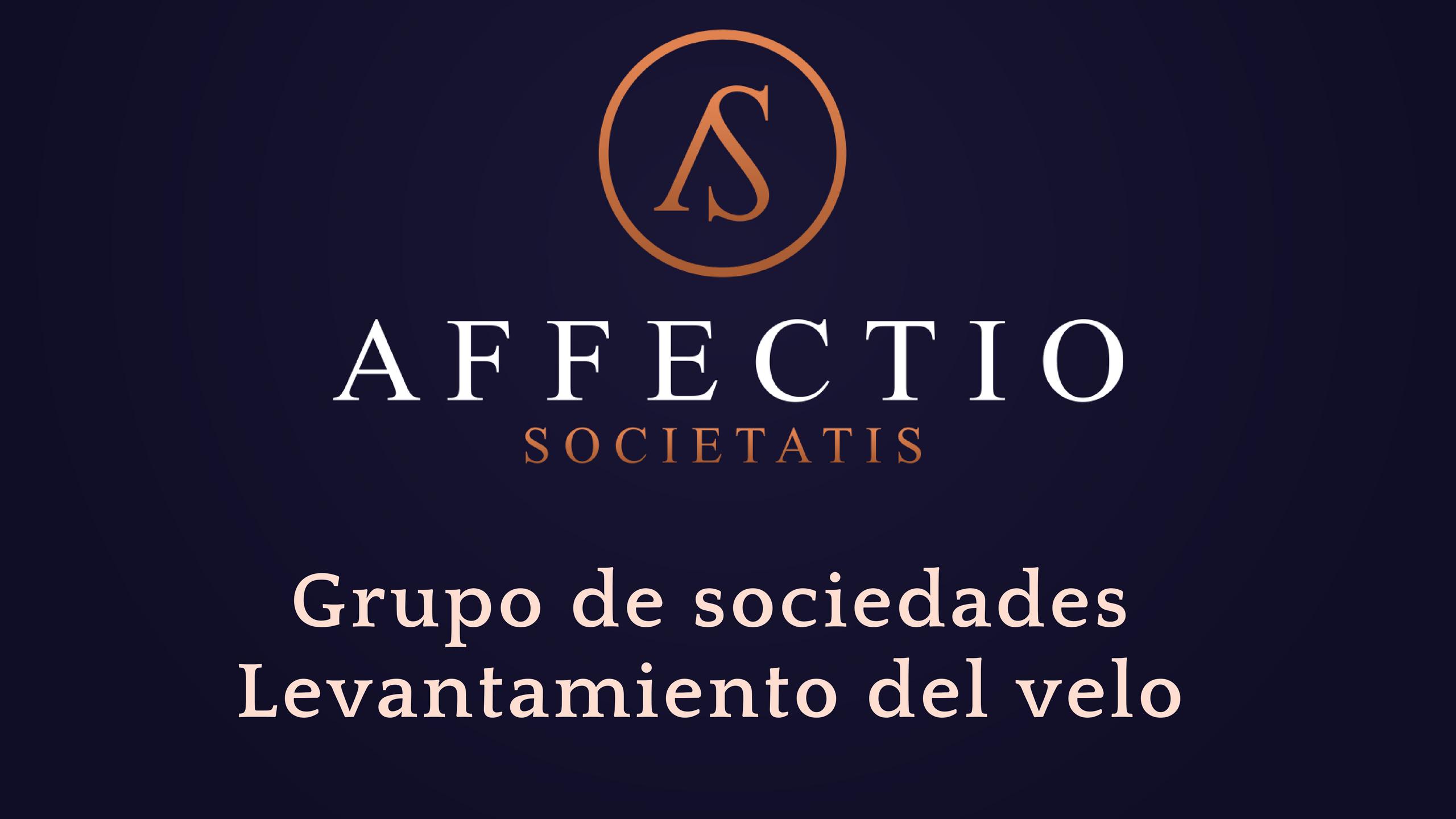 Grupo de sociedades y levantamiento del velo