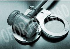 El nuevo artículo 324 LECRI: rapidez e impunidad