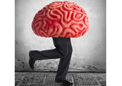 Un cerebro con piernas