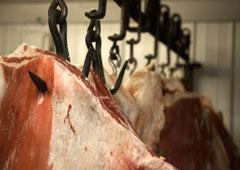 Carnede animal colgada de un pincho