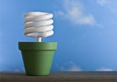Una maceta con bombillla energia sostenible