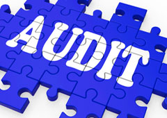 Palabra audit